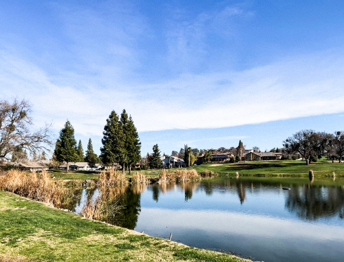 View of a pond on the course at La Contenta Golf Club